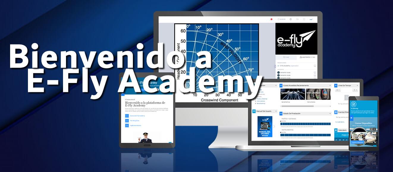 Course Image Introducción a E-Fly Academy